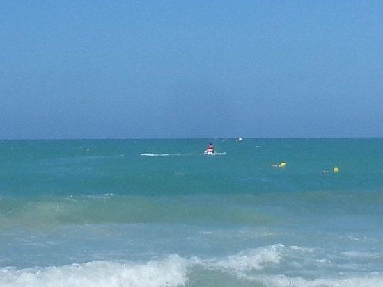 Green Palm: plage