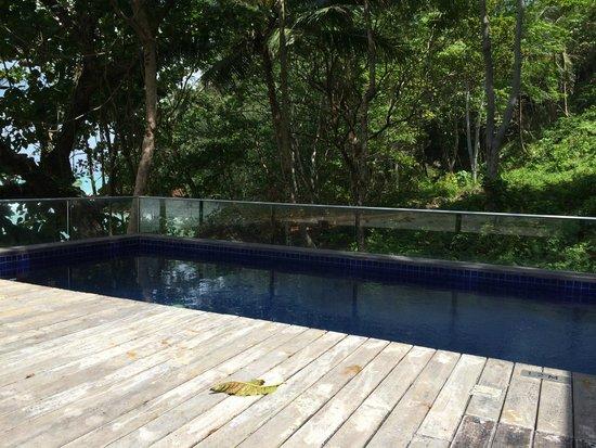 Novotel Phuket Kamala Beach : Our rooftop pool
