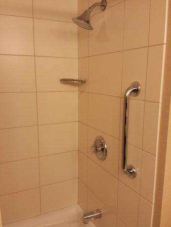 Detroit Marriott Livonia: clean shower