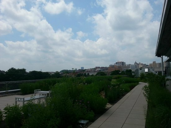 Phipps Conservatory : View of Pittsburgh from roof of ed/adm building