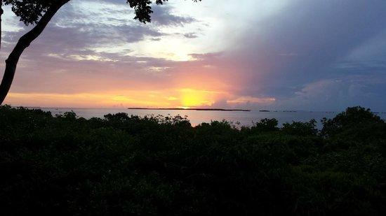 Hilton Key Largo Resort: Sunset view from Sunset Terrace