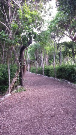 Hilton Key Largo Resort: Pathway between beaches