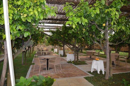 Casa Mariantonia: Restaurant