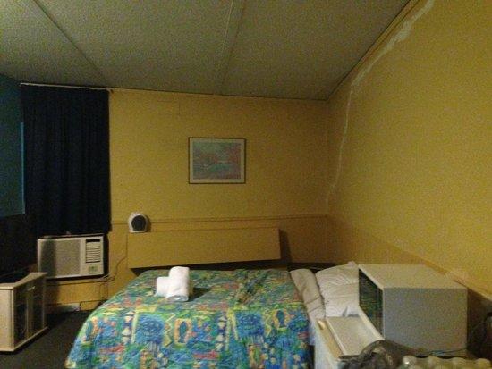 Bundoora, Australia: room
