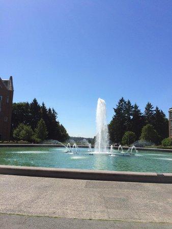 University of Washington: Universidade.