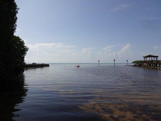 Ocean Pointe Suites at Key Largo: Shallow wading area at beach meets Atlantic Ocean
