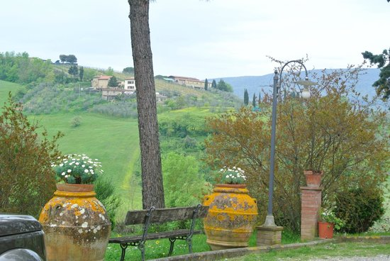 Tuscan Wine Tours by Grape Tours: Beautiful view of the vineyard grounds