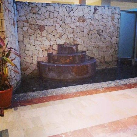 Valentin Imperial Maya: Fountain in bathroom