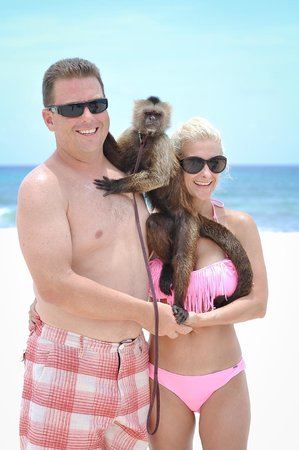 Valentin Imperial Maya: Fun with Milo the Capuchin