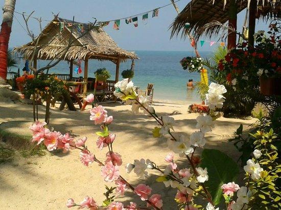 King Busch Reggae Beach Mae Nam Restaurant Bewertungen
