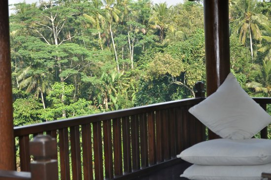 Villa Santai: Amazing Jungle Views