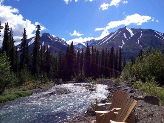 McKinley Creekside Cabins : Beautiful view while sipping wine!