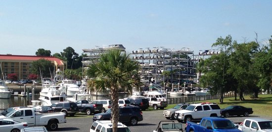 SpringHill Suites Charleston Downtown/Riverview: View of surround of the Hotel.