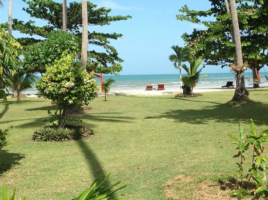 Viva Vacation Resort : Sea View from the room
