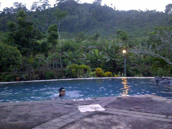 Margo Utomo Agro Resort & Cottages: hotel pool