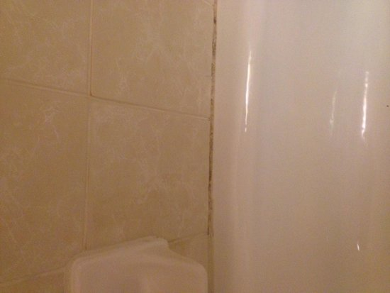 Crowne Plaza Lake Placid: Tub grout