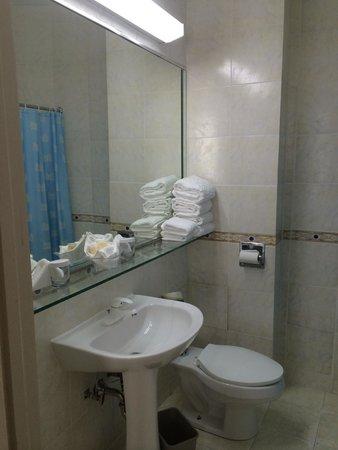 Congress Plaza Hotel: Baño