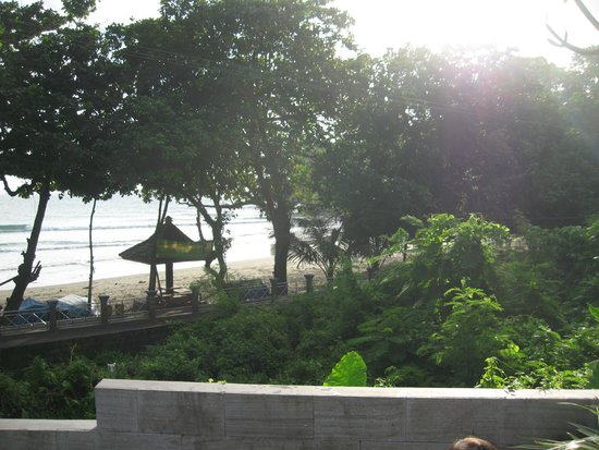 JavaCove Beach Hotel: Pemandangan dari kolam renang
