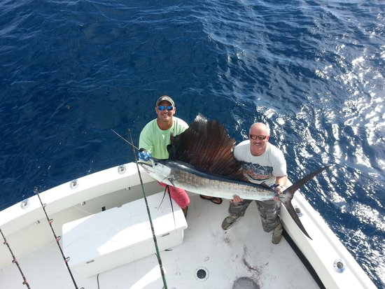 Ultimate Sport Fishing Charters