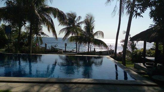 AquaMarine Diving - Bali: Dive Centre in Tulamben Wreck