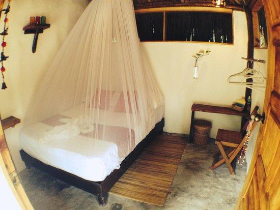 foto de yoga shala tulum tulum flora tripadvisor. Black Bedroom Furniture Sets. Home Design Ideas