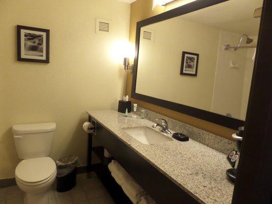 BEST WESTERN PLUS Denver Tech Center Hotel: Nice bathroom