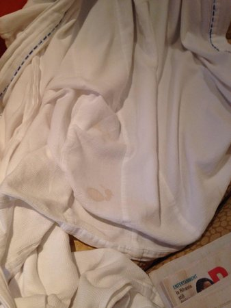 Vivanta by Taj - President, Mumbai: Stained robe :- didn't expect this from Taj atleast