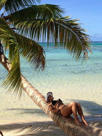 Hotel Les Tipaniers: Beach