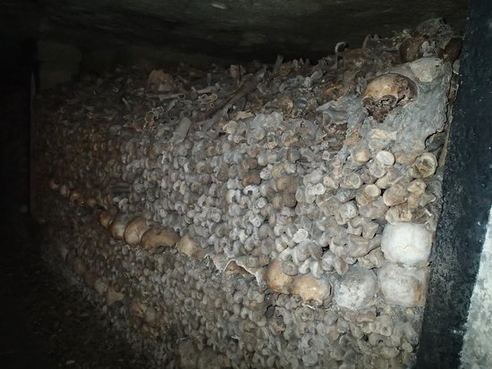 The Catacombs: Bones, lots of them