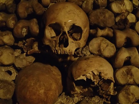 The Catacombs: Skulls