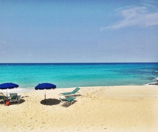 Sonesta Maho Beach Resort & Casino : This is for real!
