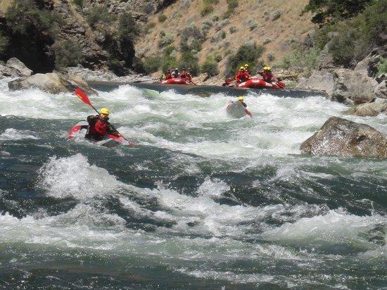 ROW Adventures - Salmon River Canyons: Rapids