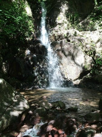 Rancho El Charro: The waterfall we rode to