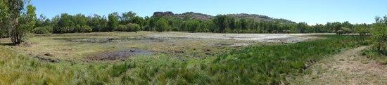 Nourlangie: Wetlands walk