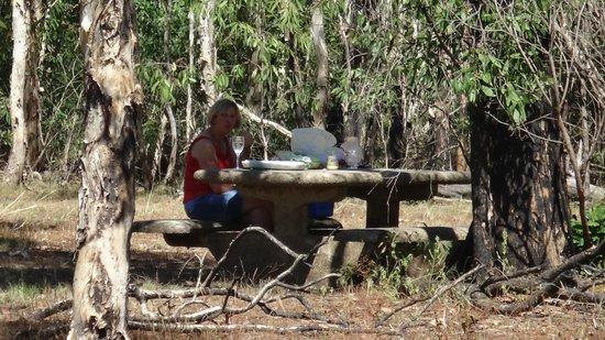 Nourlangie: Picnic spot on wetlands walk