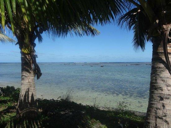 Bedarra Beach Inn: View from the seated beachfront area
