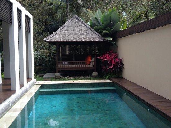 The Samaya Bali Ubud: Private pool in the villa