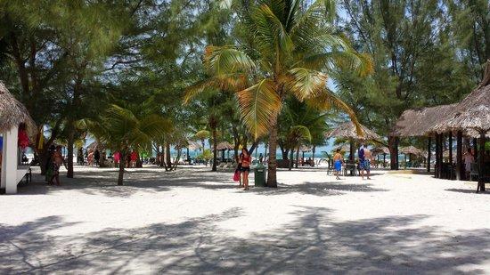Isla Pasión: Passion Island