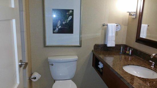 Raleigh Marriott City Center: Bathroom in 427