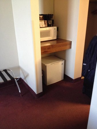 Grand Vista Hotel: Fridge and microwave