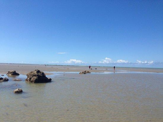 Cumuruxatiba Beach: Delícia de lugar