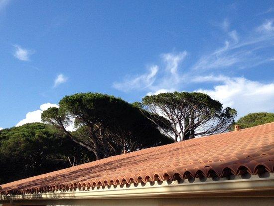 Najeti Hôtel de Valescure : une vue sur la pinede
