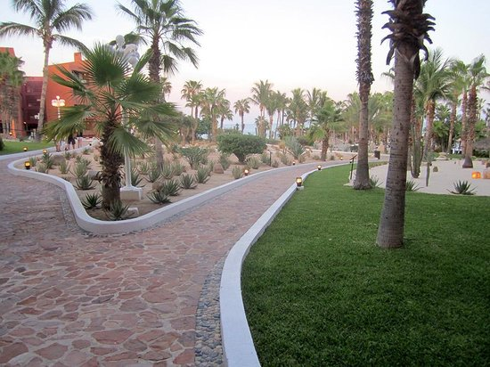 Paradisus Los Cabos: grounds