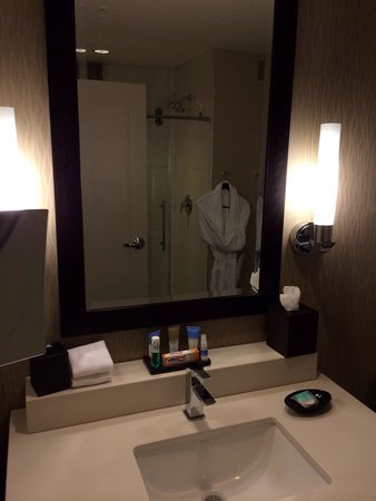 Hyatt Regency Atlanta Perimeter at Villa Christina: Very nice bathrooms.