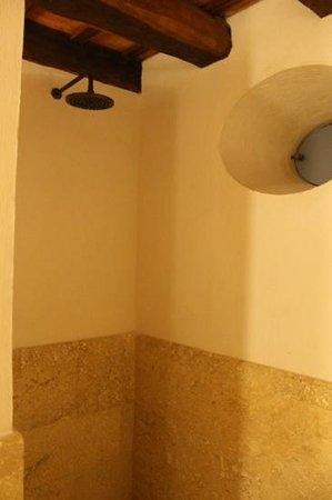 Hotel Casa San Agustin : Shower