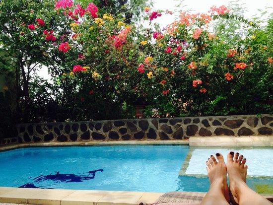 Villa Lumbalumba Lovina Bali: Pool