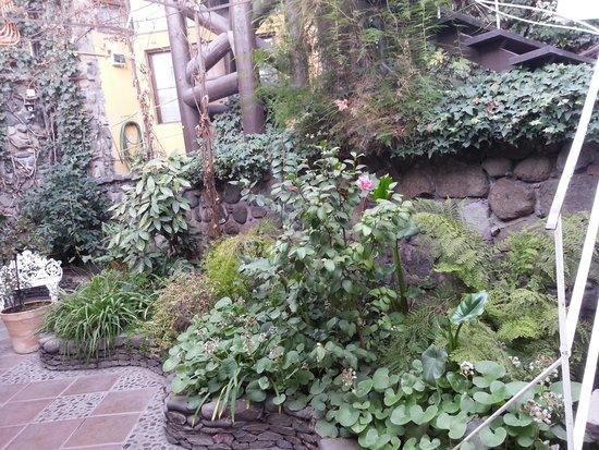La Chascona (maison de Pablo Neruda) : The Landscaping