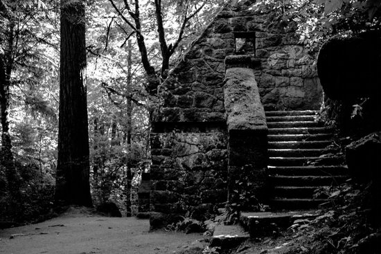 Forest Park: Witch House