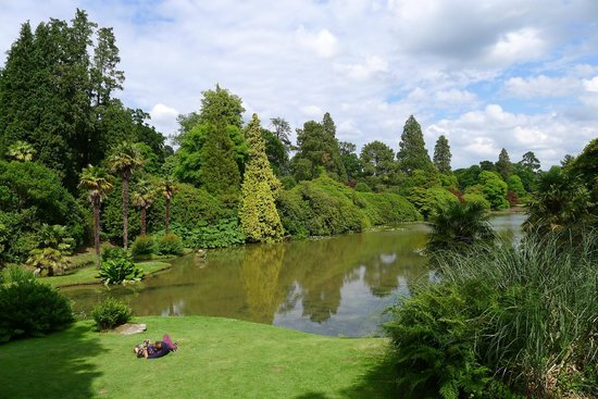 Sheffield Park and Garden: View from just one of the lakeside sweet spots