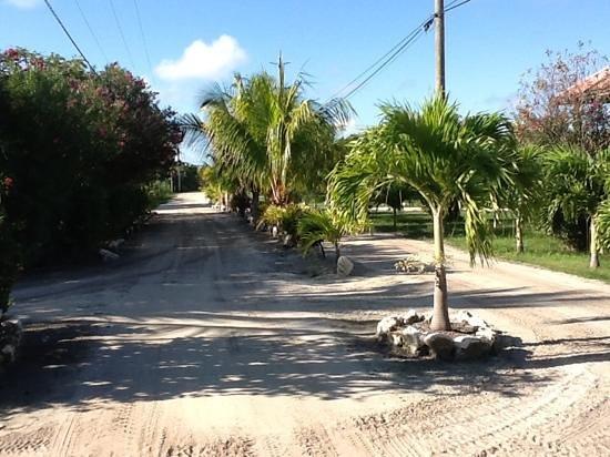 Belizean Shores Resort: front roadway